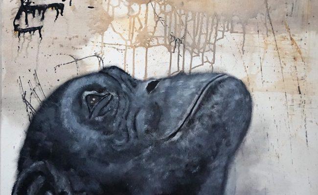 2018 – Bonobo träumt